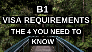 B1 Visa Requirements [The 4 You Need to Know]